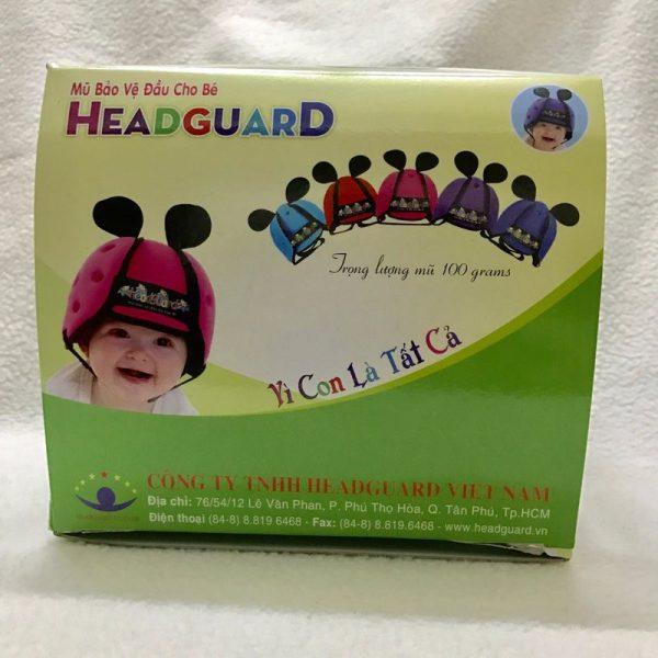 Mẫu hộp giấy đựng nón bảo hiểm Hecdguard